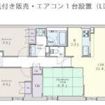 11階角(間取)