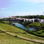 若宮公園 約100m