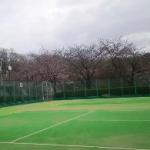 若宮公園テニスコート 約230m(周辺)